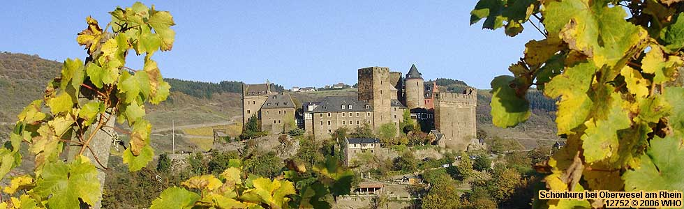 Medieval castle Schonburg on the Rhine River Hill in Germany